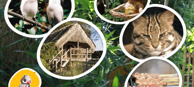 Vanaf volgende week zijn onze ketjap en sambal verkrijgbaar bij Dierenpark Taman Indonesia in Kallenkote (www.taman-indonesia.nl)